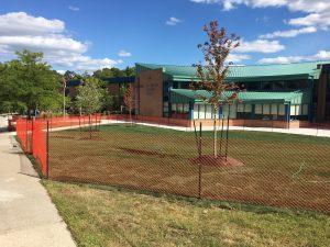 New School Grounds!